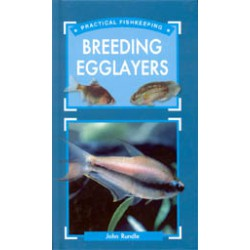 BREEDING EGGLAYERS, John Rundle