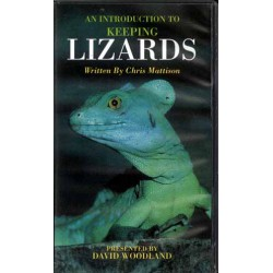 LIZARDS, KEEPING, INTRO. TO, VIDEO