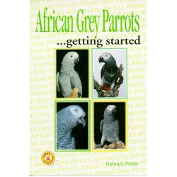 AFRICAN GREY PARROTS,GETTING STARTED